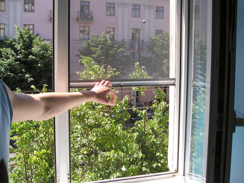 Виды москитных сеток на окна