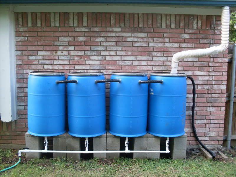 Как собирать дождевую воду правильно?
